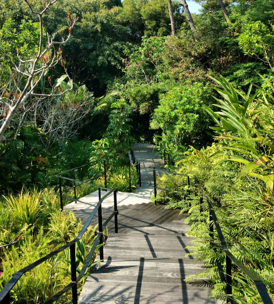 Ritz Carlton Okinawa Spa Path