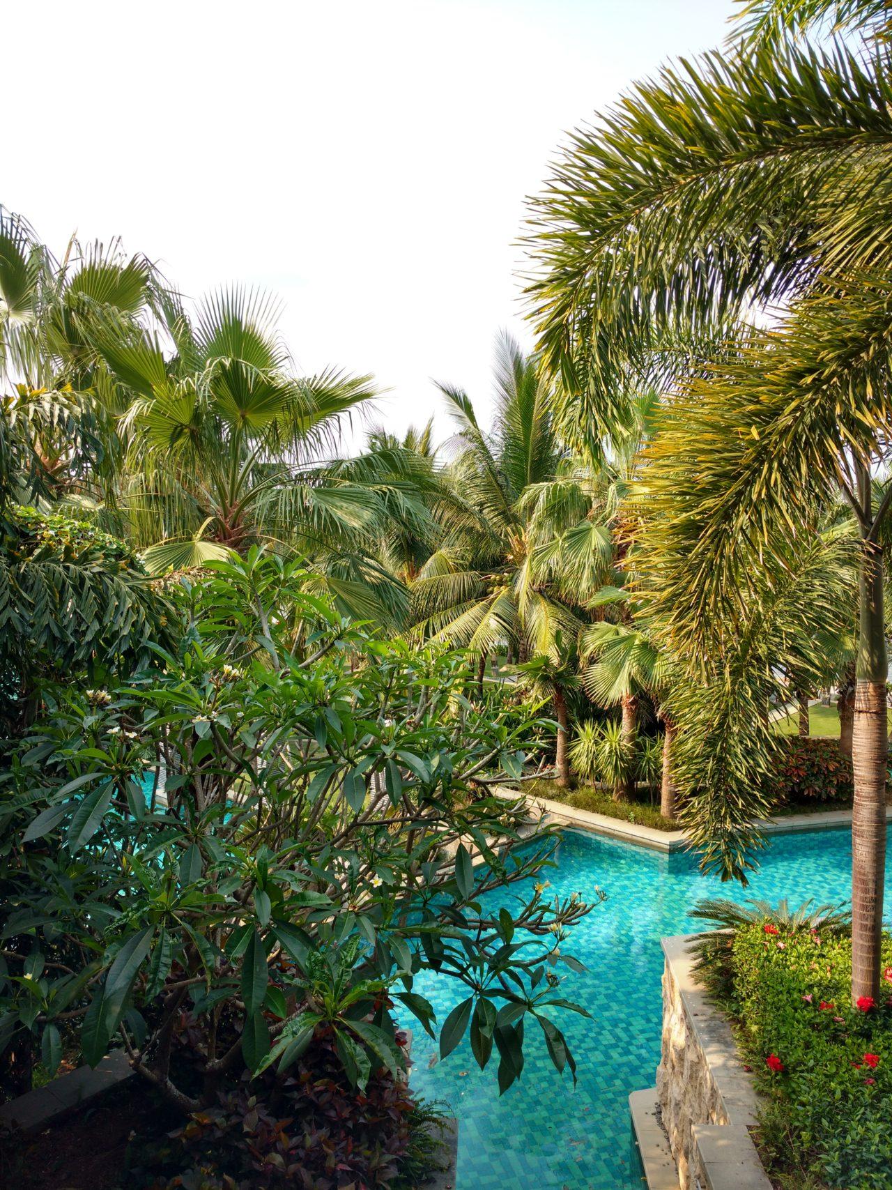 Mandarin Oriental Sanya Room View