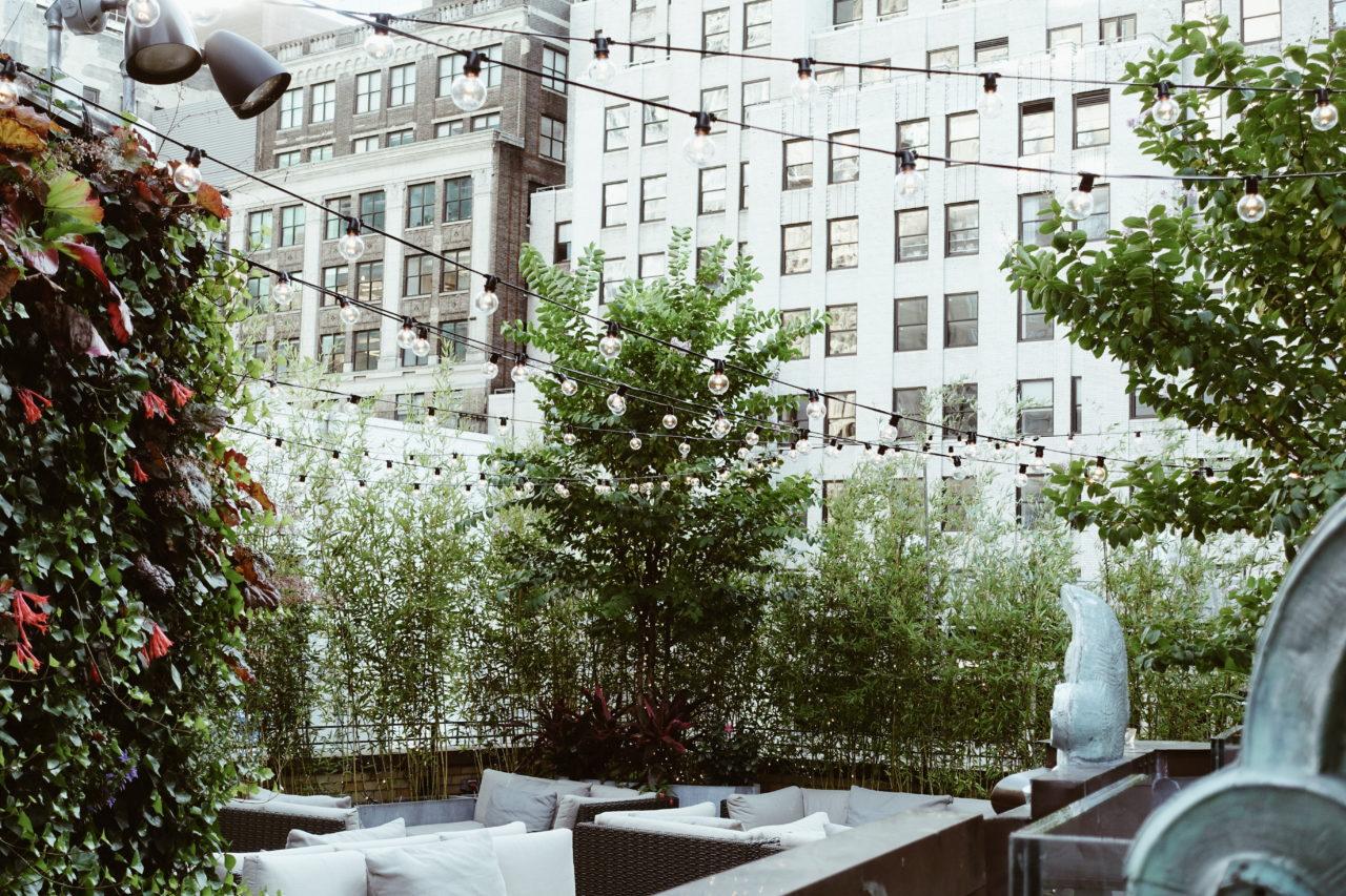 St Cloud rooftop bar