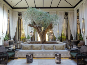 Ritz Carlton Al Wadi tree